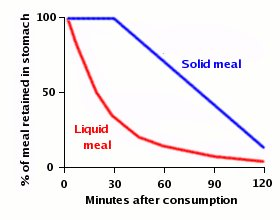 %meal in stomach vs time
